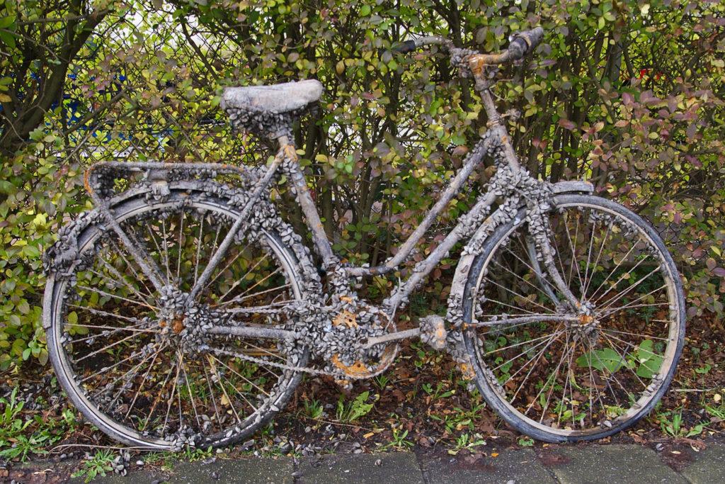 Bicycle-Friendly-Amsterdam3